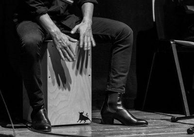 Mani Su Cajon, Foto di Stefano Raspa, 2018